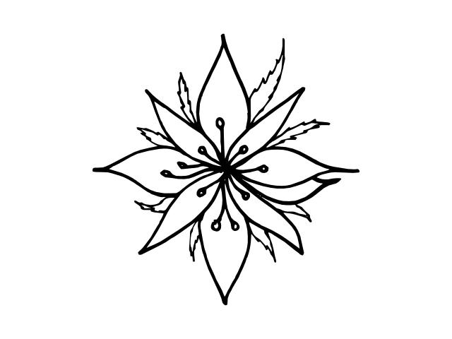 flower geo 8