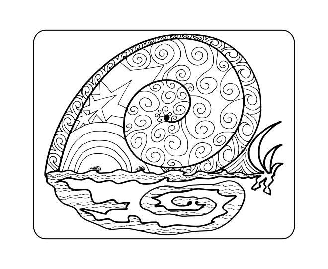 snail sunrise