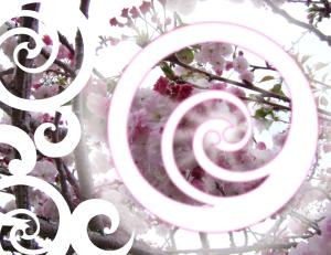 circle3 (2)