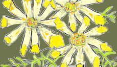 2017-03-28-02-GC101 Cut Flowers