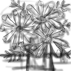 20170308-03-CC Cut Flowers