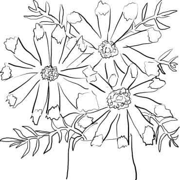 20170308-05-CC Cut Flowers