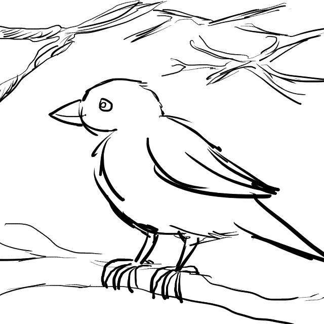 20170309-07-CC Sparrow