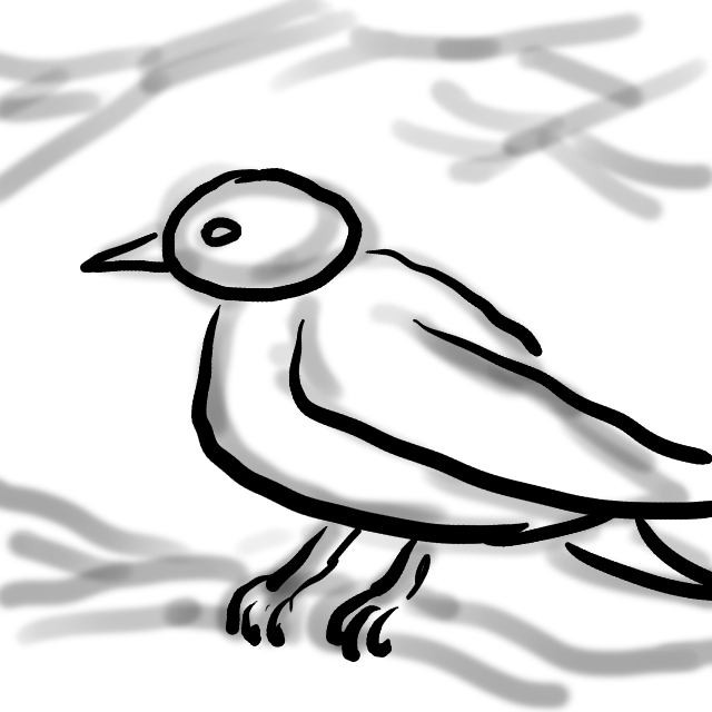 20170309-10-CC Sparrow Sketch