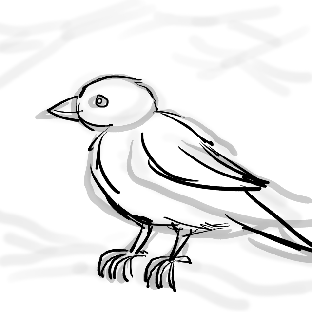 20170309-11-CC Sparrow Sketch